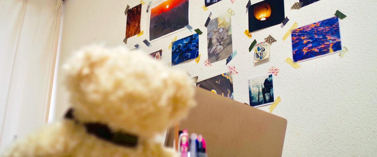 クマのぬいぐるみと壁に貼られた写真